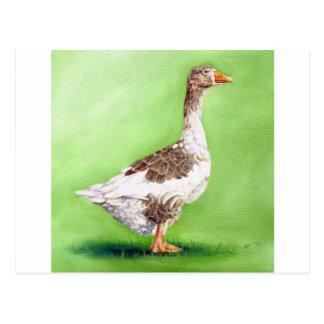Cartão Postal Um retrato de um ganso
