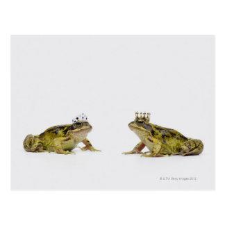 Cartão Postal um sapo do rei e da rainha que olha se
