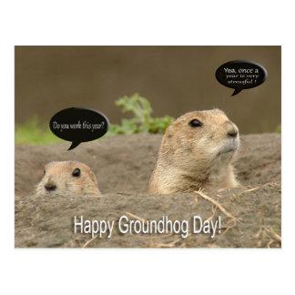 Cartão Postal Um um o ano, dia de Groundhog