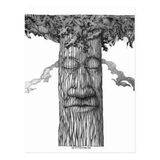 Cartão Postal Um &W poderoso do cobrir da árvore