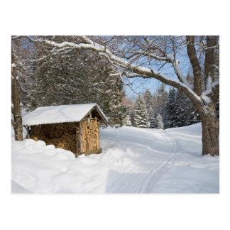 Cartão Postal Uma cena nevado lagoa do Lyford de AMC em pouca