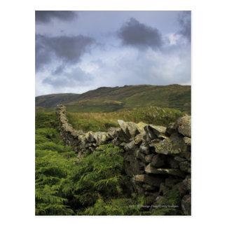 Cartão Postal Uma cerca de pedra através dos campos