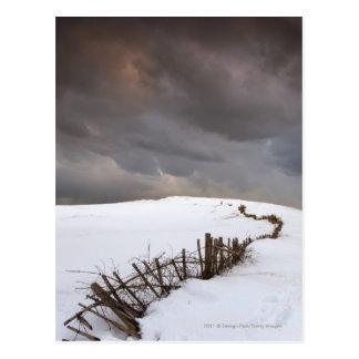Cartão Postal Uma cerca quebrada ao longo de um campo coberto de