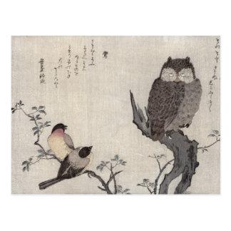 Cartão Postal Uma coruja e dois Bullfinches orientais