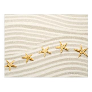 Cartão Postal Uma fileira do unstraight das estrelas do mar