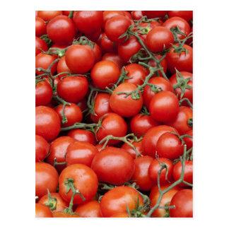 Cartão Postal Uma grande colheita do tomate em uma tenda do