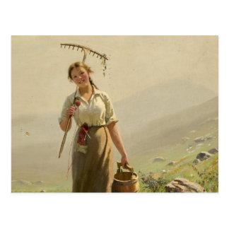 Cartão Postal Uma jovem mulher no prado por Hans Dahl