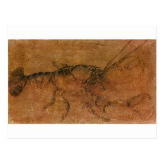 Cartão Postal Uma lagosta por Albrecht Durer
