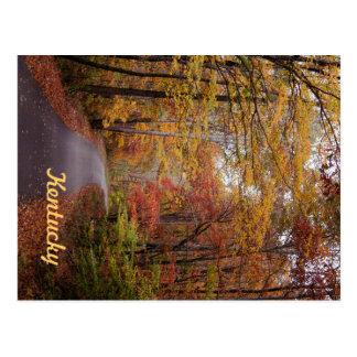 Cartão Postal Uma movimentação do outono por JerseyFawn