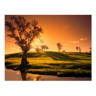 Cartão Postal Uma paisagem rural das colinas de Adelaide