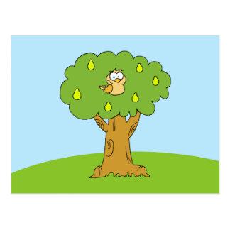 Cartão Postal Uma perdiz em uma árvore de pera