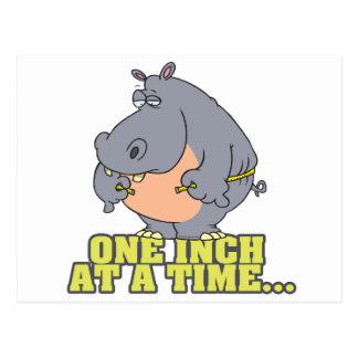 Cartão Postal uma polegada em um humor do hipopótamo da dieta do