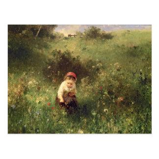 Cartão Postal Uma rapariga em um campo