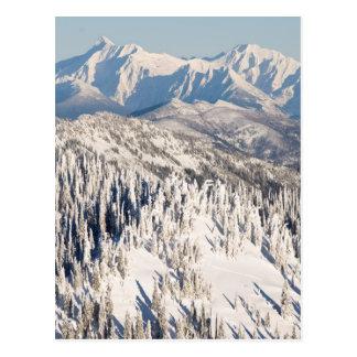 Cartão Postal Uma vista cénico de montanhas nevado e de árvores