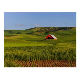 Cartão Postal Uma vista cénico de um celeiro em Moscovo Idaho.