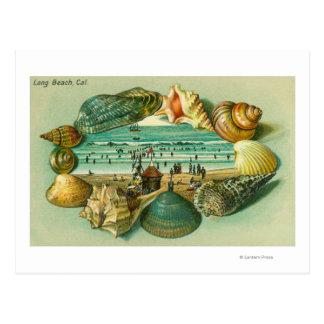 Cartão Postal Uma vista cénico limitada com escudos do mar