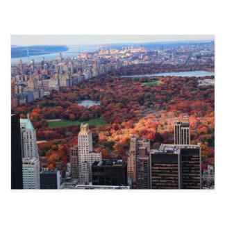 Cartão Postal Uma vista de cima de: Outono no Central Park 01