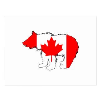 Cartão Postal Urso Cub de Canadá