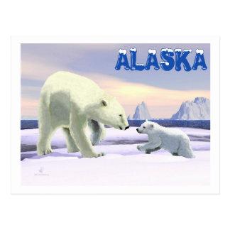 Cartão Postal Urso polar - Mama Nariz Melhor