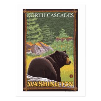 Cartão Postal Urso preto na floresta - cascatas nortes,
