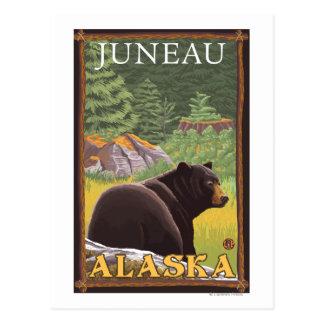 Cartão Postal Urso preto na floresta - Juneau, Alaska