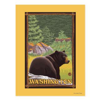 Cartão Postal Urso preto na floresta - Washington