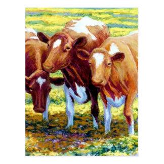 Cartão Postal Vaca de leiteria das vacas na imagem da pintura do