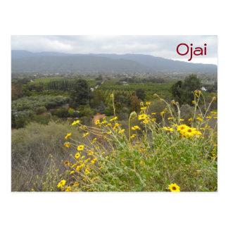 Cartão Postal Vale de Ojai, Califórnia