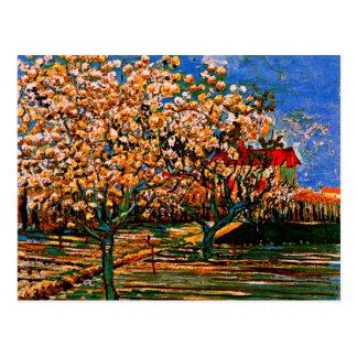 Cartão Postal Van Gogh - pomar na flor