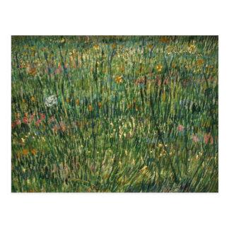 Cartão Postal Van Gogh - remendo da grama