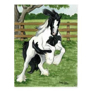 Cartão Postal Vanner aciganado na arte do cavalo do jogo