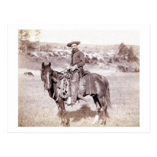 Cartão Postal Vaqueiro solitário