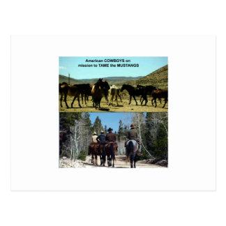 Cartão Postal Vaqueiros americanos na viagem aos cavalos do