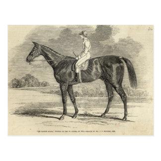Cartão Postal Vencedor do senhor Tatton Sykes', do St. Leger