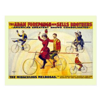 Cartão Postal Vendas restauradas de Forepaugh das acrobatas do