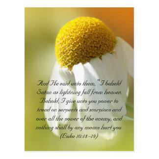 Cartão Postal Versos da bíblia, margarida