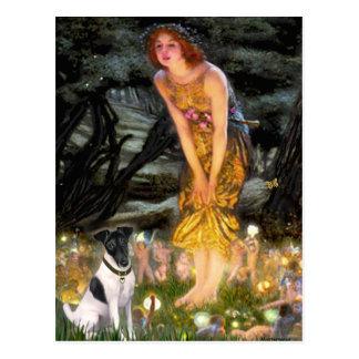 Cartão Postal Véspera de plenos Verões - Fox Terrier liso
