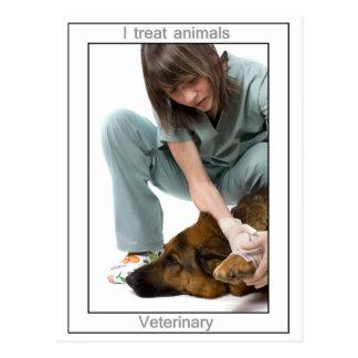 Cartão Postal Veterinário