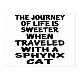 Cartão Postal Viajado com gato de Sphynx