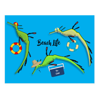 Cartão Postal Vida da praia de dragões do mar