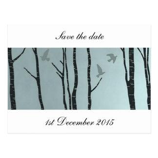 Cartão Postal Vidoeiro de prata original, pássaro - casamento,