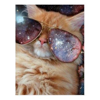 Cartão Postal Vidros do gato - gato dos óculos de sol - espaço