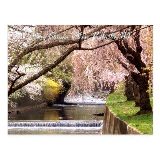 Cartão Postal Vila 04 da flor de cerejeira