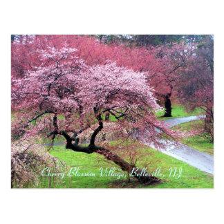 Cartão Postal Vila 05 da flor de cerejeira