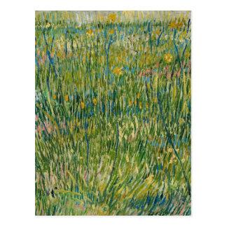 Cartão Postal Vincent van Gogh - remendo da grama