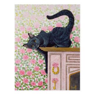 Cartão Postal Vinda acima dos rosas