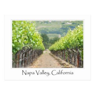Cartão Postal Vinhedo do primavera em Napa Valley Califórnia