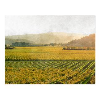 Cartão Postal Vinhedo no outono em Napa Valley Califórnia