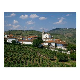 Cartão Postal Vinhedos, vila de San Miguel, Douro