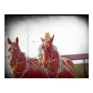 Cartão Postal Vintage de dois falsos da equipe de Amish do